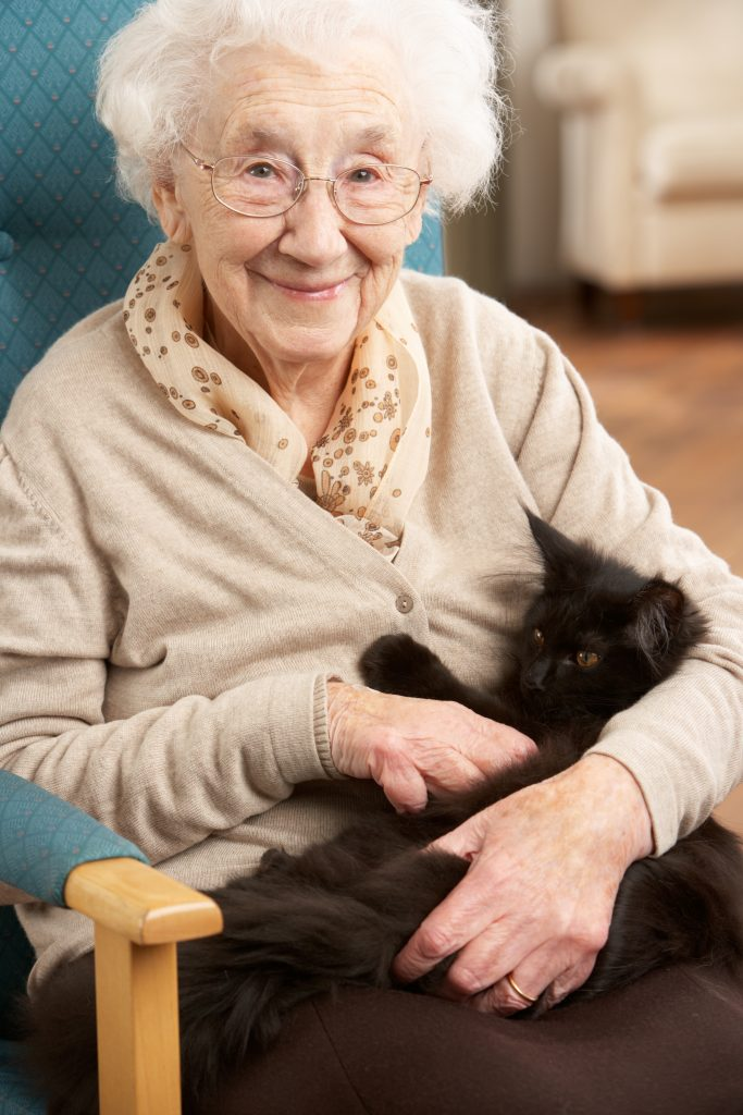 lady with dementia sat down stroking a black cat that is on her lap