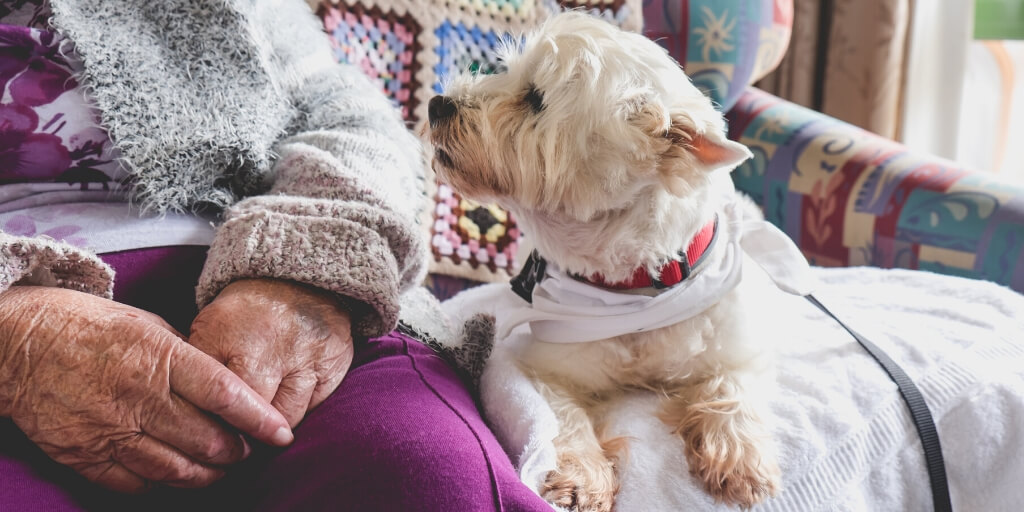 benefits of live in care keeping pets